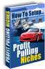 Thumbnail profit pulling niches Master resale rights
